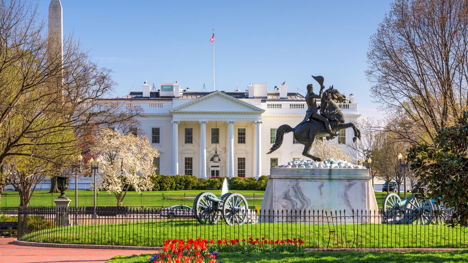 Solving the Lumber Crisis